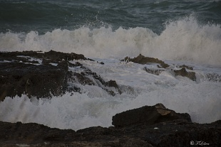 .. e sotto il maestrale urla e biancheggia il mar...