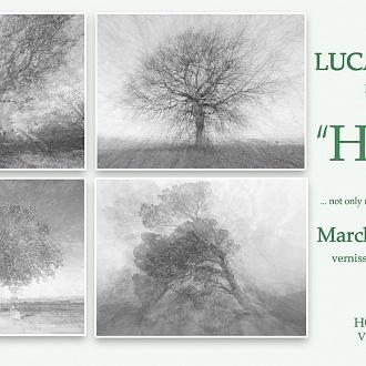 """HUGS, abbracci"" Photo Exhibition at Hotel Cellai_Florence"