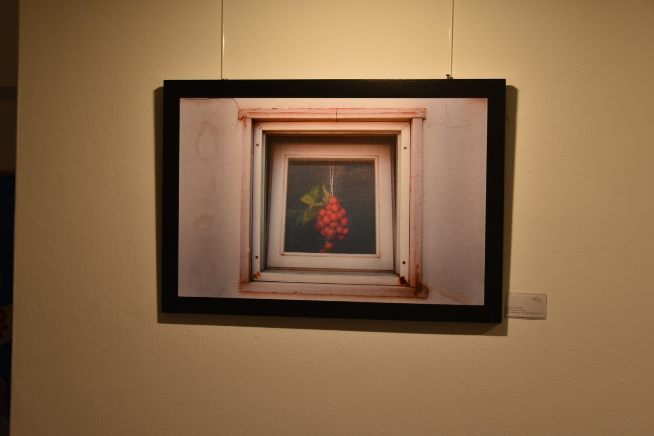 FINESTRA PUGLIESE - Stampa Fine Art - cm 75x50
