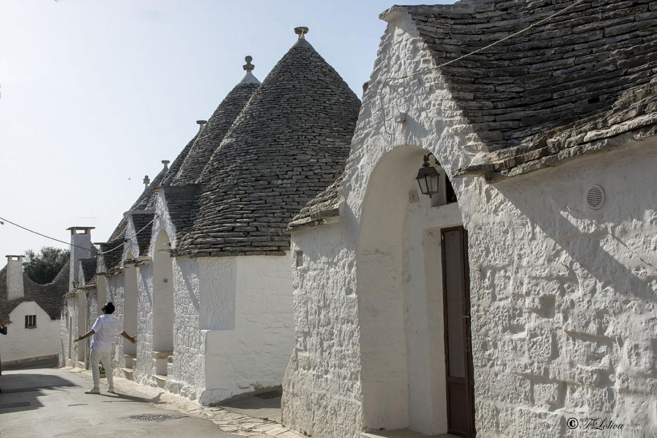 """Il nome deriva dal tardo greco τρούλος, ovvero """"cupola"""" e indica delle antiche costruzioni coniche in pietra a secco di origine preistorica. La pietra usata per le costruzioni era ricavata dalle rocce calcaree dell'altopiano delle Murge."""