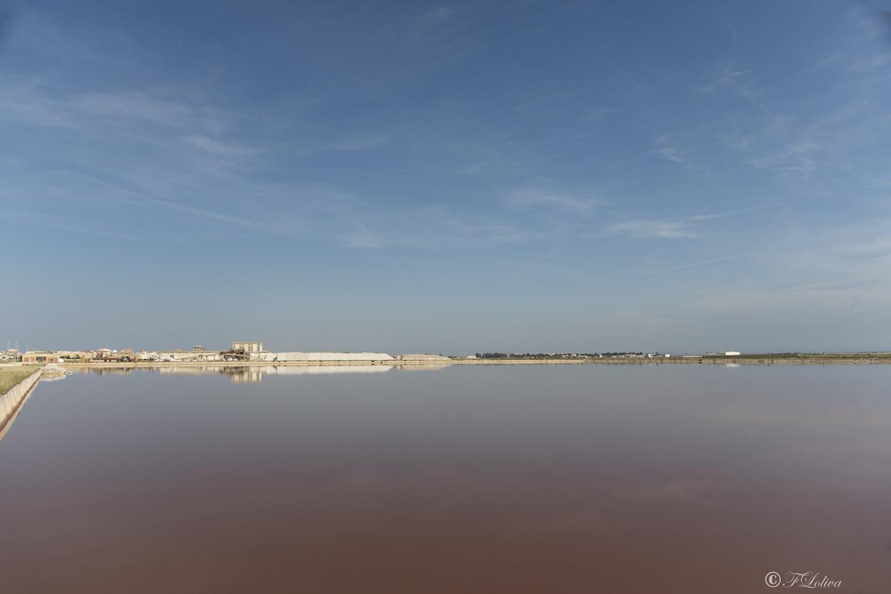 Costituita da una vasta distesa di acque calme suddivise in vasche per la produzione del sale marino, oggi con i suoi 20 km di lunghezza e 5 km di larghezza, con una produzione media annua di circa 5.500.000 quintali di sale, è la prima d'Europa.