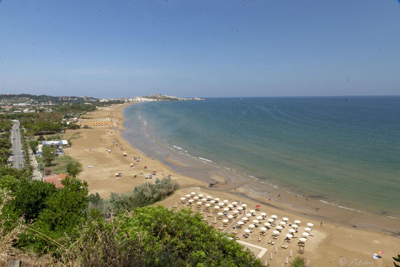 """SPIAGGIA DELLA SCIALARA - La spiaggia della Scialara è forse la principale spiaggia di Vieste. Essa è alle pendici del massiccio calcareo su cui è costruito il centro storico, che si affaccia su di essa.  E' detta anche spiaggia """"del Castello"""" perchè il Castello Svevo la sovrasta, creando un paesaggio suggestivo."""