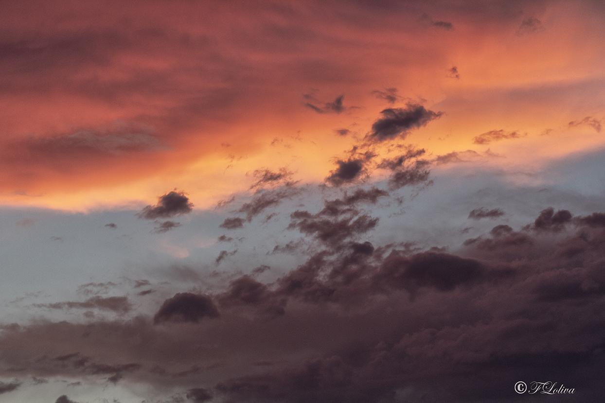 C'è sempre qualcosa di insolito nell'aria quando sono insieme. Non la puoi chiamare quiete e non la puoi chiamare tempesta. Sa di mandarini e di mandorle tostate e di mare e di biscotti appena sfornati e di primavera. Quasi fossero avvolti in una nuvola. Alcuni pensano che sia turchese, quella nuvola, ma altri no, altri dicono arancione. (Nataša Dragnic)