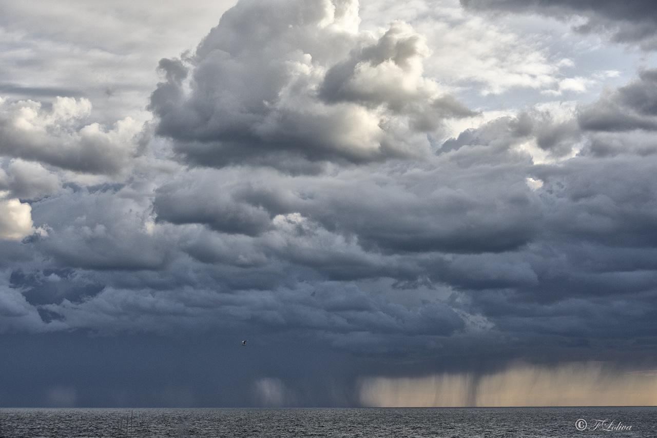 Se diventassi cieco, quello che mi dispiacerebbe di più sarebbe di non poter più guardare fino all'idiozia la sfilata delle nuvole. -- EM Cioran