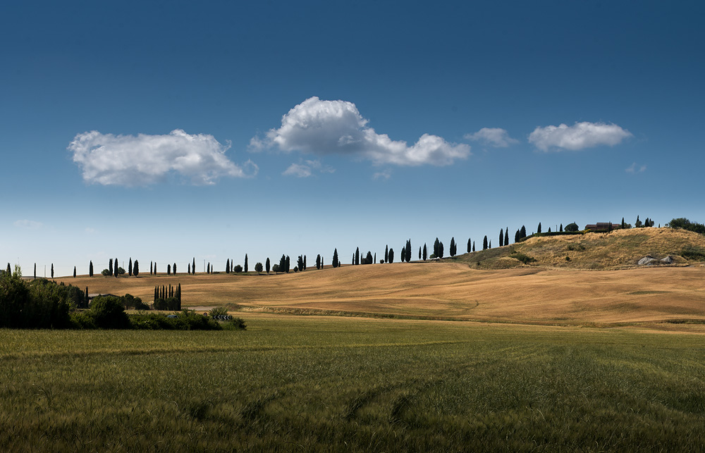 TOUR IN VAL D'ORCIA in primavera e in autunno