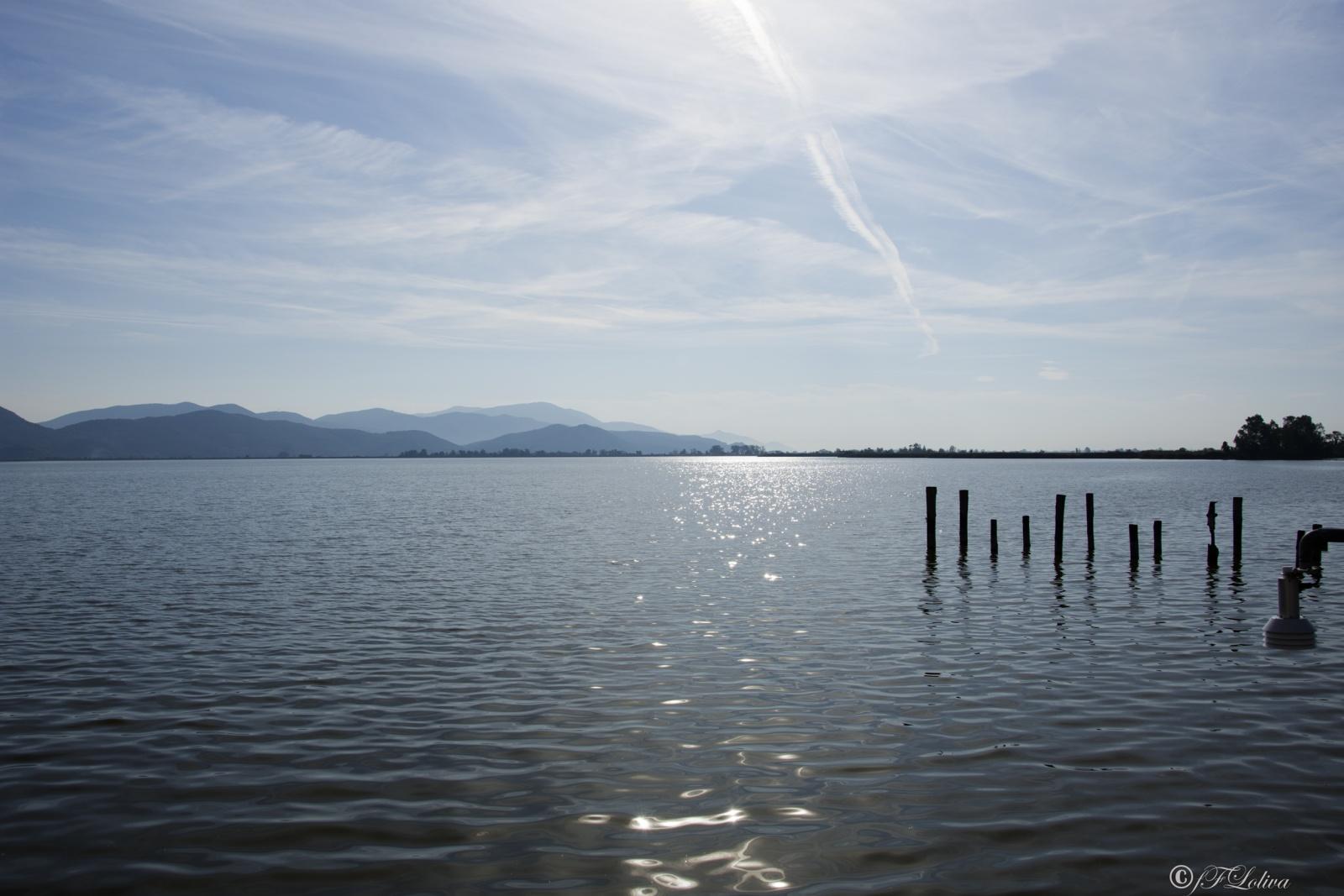 Il lago di Massaciuccoli (in provincia di Lucca, con il lembo meridionale appartenente alla provincia di Pisa, vicino all'omonima frazione di Massarosa in provincia di Lucca) è un lago costiero della Toscana.  Il lago e l'area palustre intorno fanno parte del Parco naturale di Migliarino, San Rossore, Massaciuccoli e di un'oasi LIPU, viste le numerose specie di uccelli presenti.